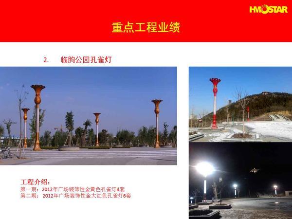 临朐公园孔雀灯